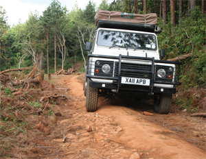 DRIVING MALAWI