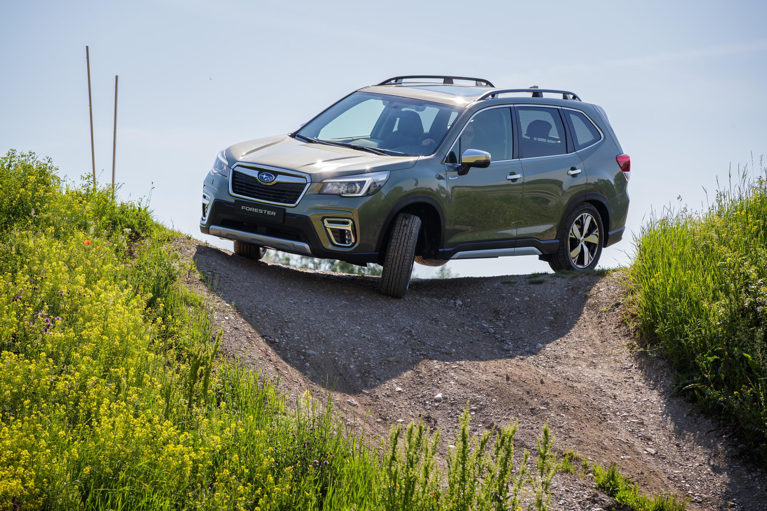 Subaru forester e boxer